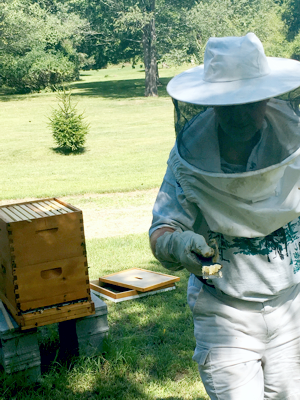 Mike checking out his hive.